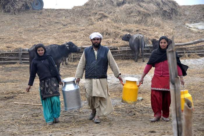 punjab farmer with daughters