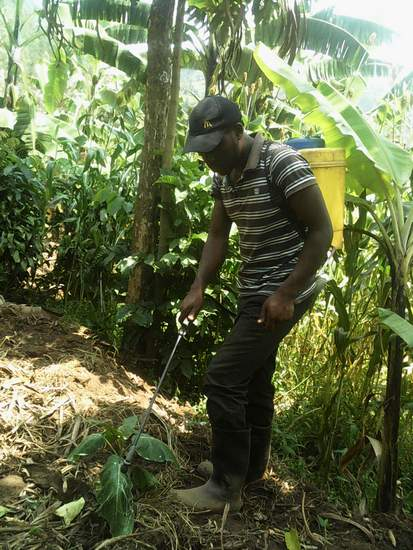 L/'ambassadeur Multi-Purpose compost 20 L-COMPOST