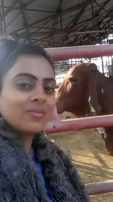 Nikki Pilania Chaudhary