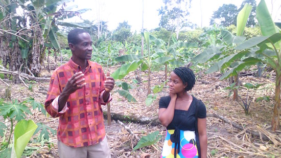 Philomena Entsie ( team member ) with Mr Kusi Agyei ( farm manager and extension officer )