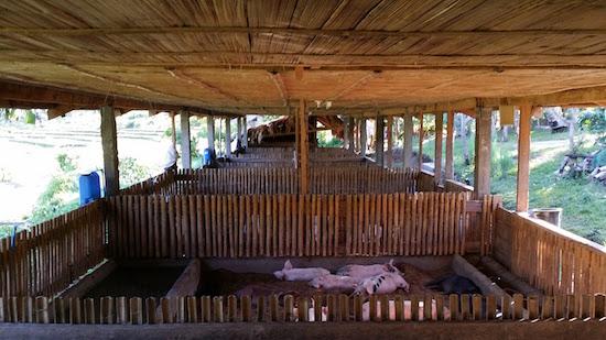 Bamboo Construction Bali