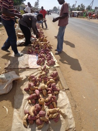 Potatoes on the market