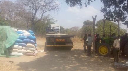 Truck Transporting Collected Maize_Kapiri_Zambia