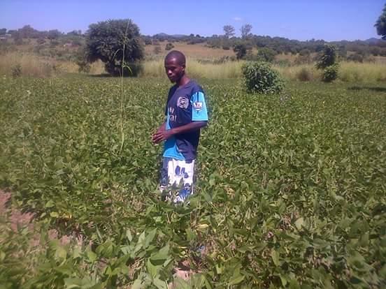 Wisdom Bwanali-Mchinji-Malawi