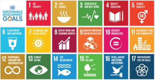 ResizedImage600309-SDGs-1