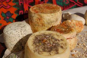 georgian-cheese