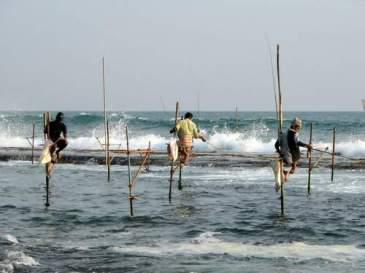 stilts_fishermen_sri_lanka_02