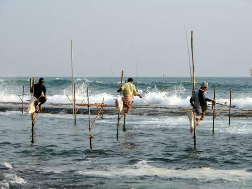stilts_fishermen_sri_lanka_02