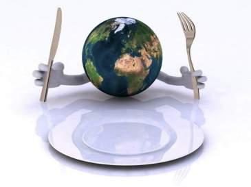 world-hunger-earth-plate-768x576