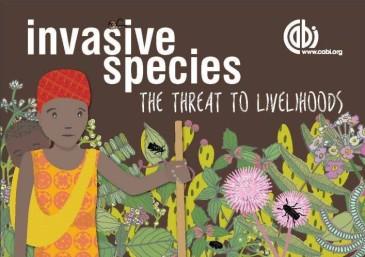 invasives