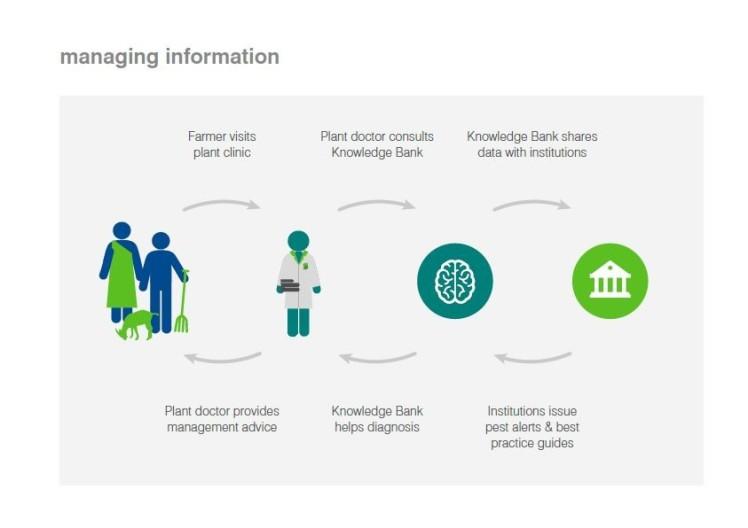 managing-info