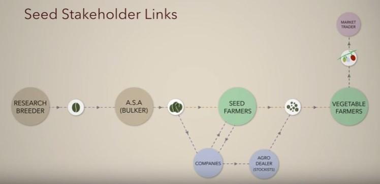 seed-links