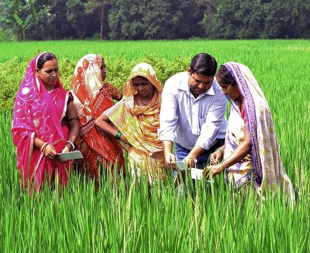 farmers CCAFS