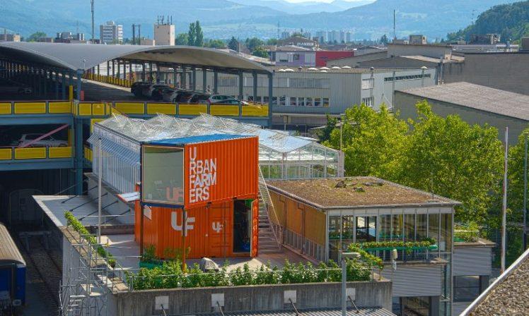 Urban Farming.jpg