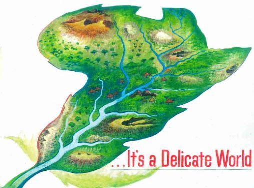 Delicate world